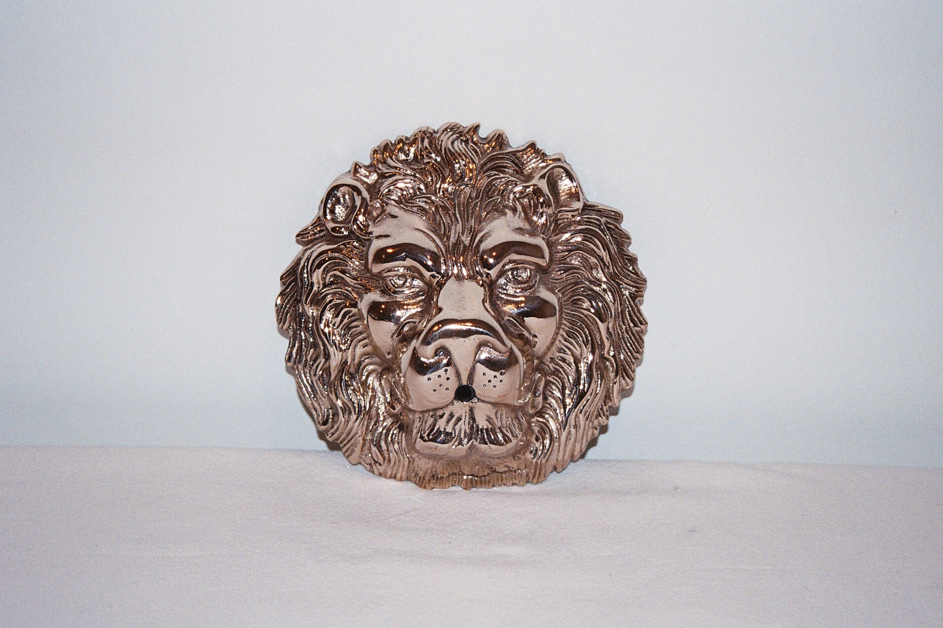 Lion Head After